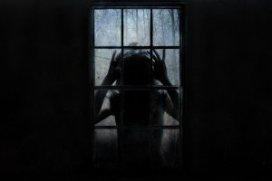 window-silhouette